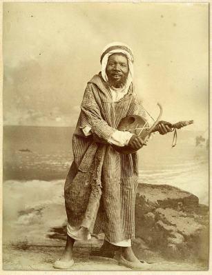 AfricanFiddler
